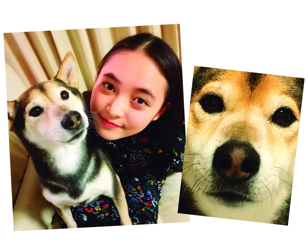 宮野陽名ちゃんは愛犬の「クッキー」