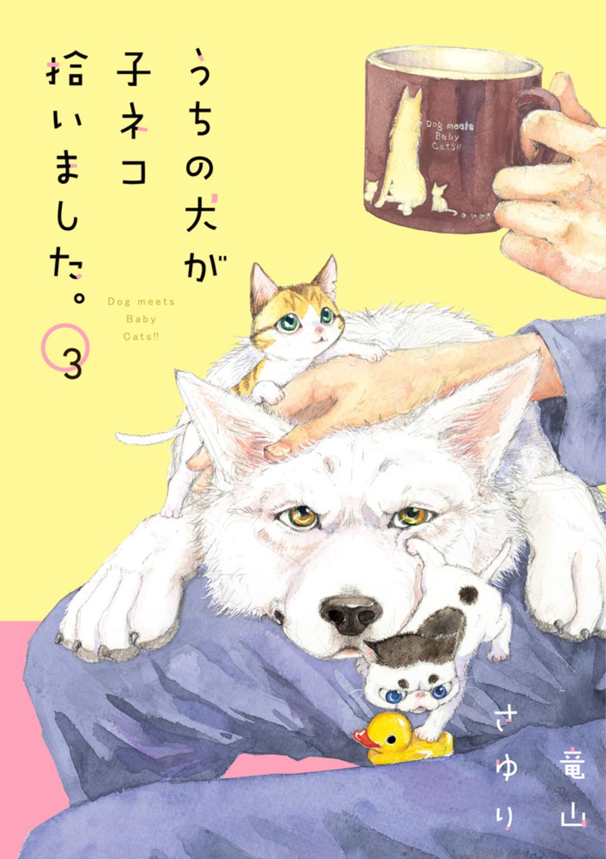 やんちゃな子猫とマジメな犬の萌えな生活