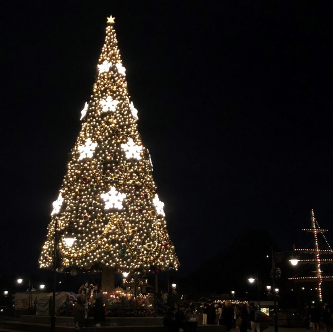 今年のクリスマスは何をしたい?