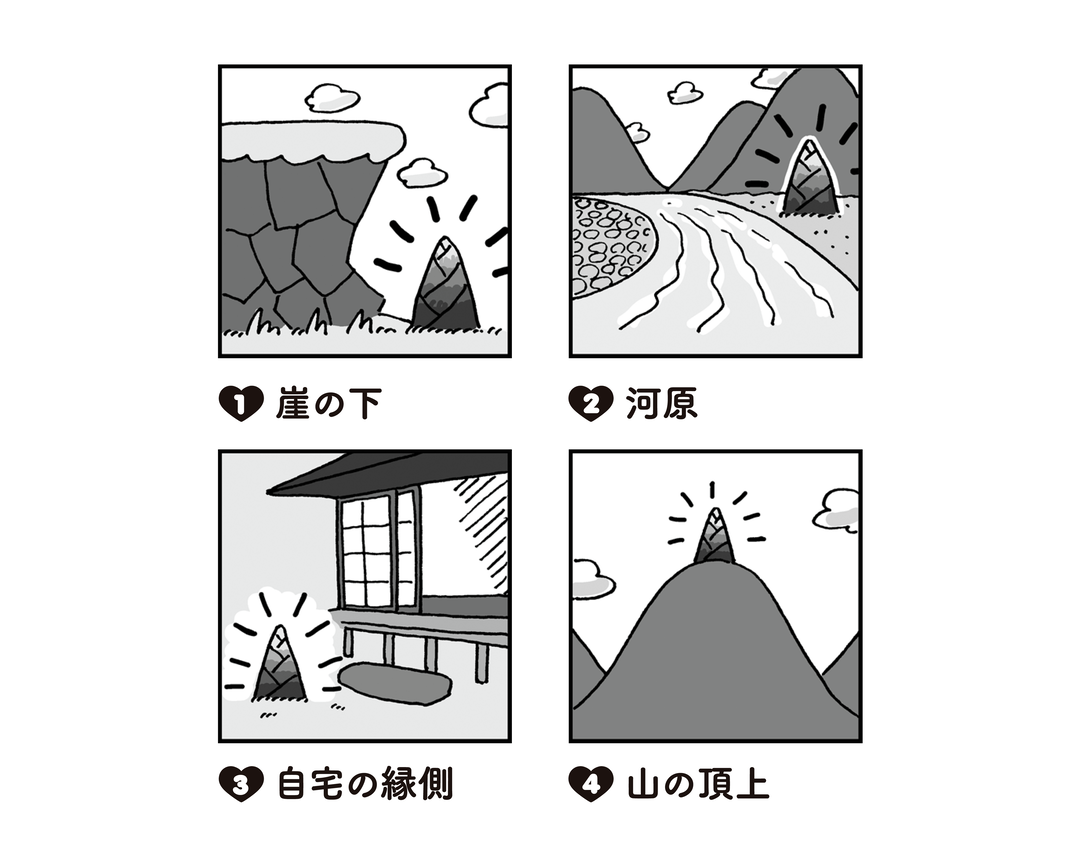 Q 近くの山にたけのこを取りに。見つからずに困っていると、思わず所に生えていました。その場所はどこ?