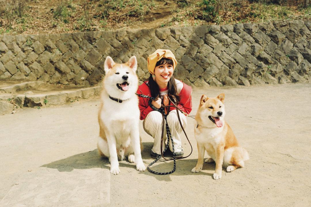 秋田犬&柴犬を飼ってます!