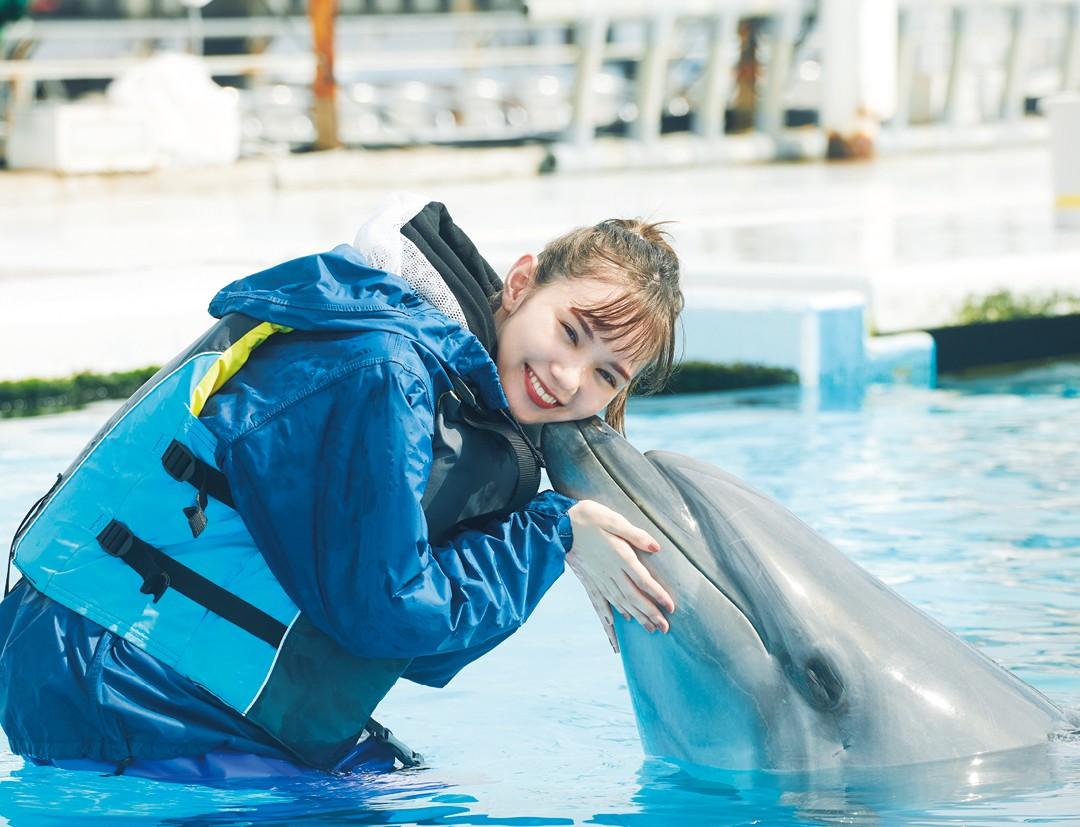 イルカとふれあい体験記